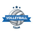 volleyball logo badge isolated vector image vector image