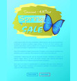 big sale spring discount offer label butterfly vector image vector image