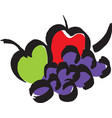 fruites the apples and grape vector image vector image