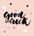 good luck text lettering calligraphy phrase color vector image
