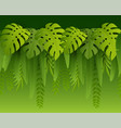 hot summer tropical leaves paper cut style vector image