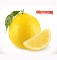 lemon fresh fruit 3d realistic icon vector image vector image