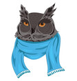 owl in a scarf portrait of a cartoon owl in vector image vector image