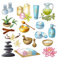 Spa Salon Decorative Icons Set vector image vector image