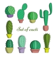 The set of cacti in pots vector image