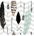 Seamless pattern with feather and arrows Chevron vector image