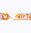 autumn fall sale banner horizontal cartoon style vector image vector image