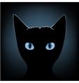 black cat blue eyes vector image