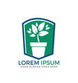 flower pot and plant logo vector image vector image