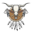 native americans emblem with bull skull vector image
