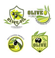 olive oil product icons set vector image