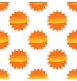 sun pattern vector image vector image