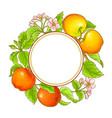apple frame vector image