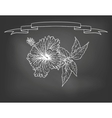 Card with hibiscus flower on chalkboard vector image vector image