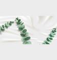 eucalyptus or eucalypti branch on satin fabric vector image vector image