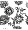 seamless pattern with black and white helichrysum vector image vector image