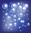shiny blue bubbles vector image vector image
