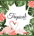 tropical event invitation card template vector image vector image