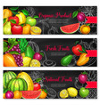 banners for tropical exotic fruits market vector image vector image