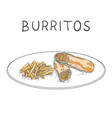 burritos with fried potatoes hand drawn on white vector image