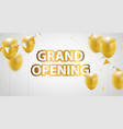 celebration grand opening banner with gold vector image vector image