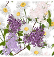 chamomile with many kind spring flowers vector image vector image