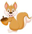 cute squirrel cartoon holding hazelnut vector image