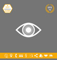 eye symbol icon with iris graphic elements for vector image vector image