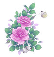 floral bunch with pink roses and butterflies vector image