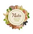 Nuts Healthy Food Concept in Flat Design vector image vector image