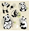 Pandas set vector image