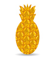 Pineapple peel Silhouette of pineapple on a white vector image