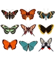 Realistic butterfly and moth collection vector image vector image