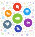 safari icons vector image vector image