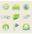Nature labels badges with leaves flowers vector | Price: 1 Credit (USD $1)