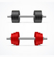 realistic detailed 3d different dumbbell set vector image