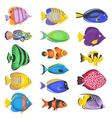 Exotic Fish Set vector image