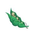 funny sleeping bean pod cartoon character vector image