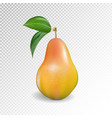 pear realistic 10eps pear punching bag vector image