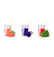 plum peach and watermelon juices vector image