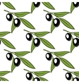 Seamless pattern with olive branches and olives vector image