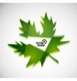3d green glossy leaf