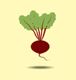 Beet Vegetable Icon vector image vector image