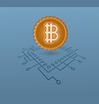 crypto-currency vector image vector image