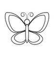 cute butterfly garden insect animal wildlife vector image vector image