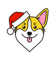 cute corgi dog in santa claus hat vector image