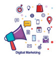 digital marketing megaphone social media vector image