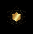 gold lotus flower mandala seed life symbol vector image vector image