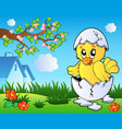 meadow with cute chicken in egg vector image