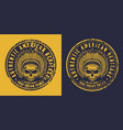 skull american indian vector image vector image